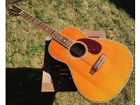 Crafter TA050 Parlour Acoustic Guitar