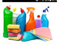 Independent Domestic Cleaner