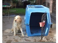 Dog's travel crate