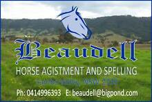 Horse Agistment and Spelling near Maitland Branxton Rutherford Lambs Valley Glen Innes Area Preview