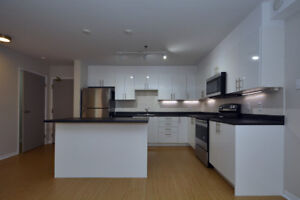 Newly Renovated 1 Bedroom, Great South End Location Promo Price!