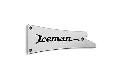 IBANEZ ICEMAN PS TRUSS ROD COVER name plate for ICEMAN electric guitar (Silver) , used for sale  Shipping to Canada
