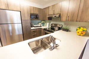 Beautiful 1 Bedroom and Den Suite in New NK Apartment Building