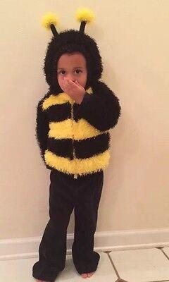 Plush Bumble Bee Hooded Jacket Halloween Small Costume - Bumble Bee Halloween Costume