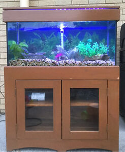 3ft Fish Tank with stand and lid Wishart Brisbane South East Preview