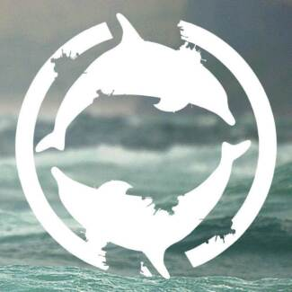 Dolphin Nipper Surf Boards, Racing Mals & Surf Skis