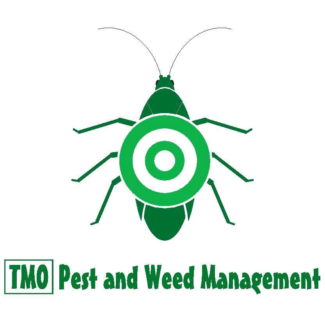 Termite inspections from  $165 (pest control)