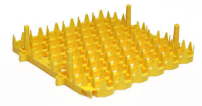 New GQF 0246 Universal (for Chicken) Egg Tray Set of 6 for Cabinet Incubator for sale  Savannah