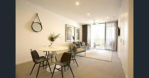 ROOM TO RENT IN AMAZING NEW APARTMENT IN THE GABBA!!! Woolloongabba Brisbane South West Preview