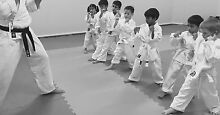 Martial Arts Self Defence - Children and Adult Classes in Rhodes Rhodes Canada Bay Area Preview
