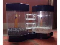 Stylish aquarium, two tropical fish tanks in one