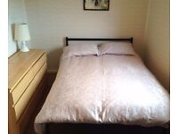 Bright Double Room in Shared Flat in Gilmerton (Near Infirmary) w Garden & Dog £420/mth ALL INCLUSV