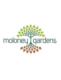 Moloney Gardens. Quality Landscaping