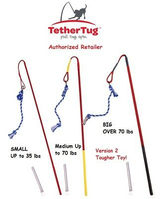 Tether Tug V2 Outdoor Dog Toy Interactive Tugging Pull Exercise 5 lbs and Up