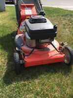 grass cutting, lawn care, lawn maintenance, lawn mowing