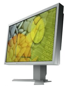 "EIZO FlexScan S2110W 22"" LCD HD Monitor 1680x1050 DVI Grade A"