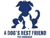 A Dog's Best Friend - Dog Walking & Pet Services