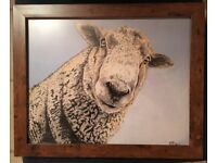 Ewe Looking at Me - Framed print in a 16 x 13 inch frame