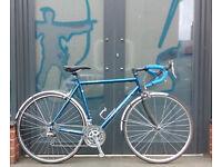Ridgeback - Horizon World - Race bike