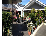 Kitchen Porter for Cameron Landscapes & Garden Centre