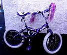 Sonic Girl's Bicycle