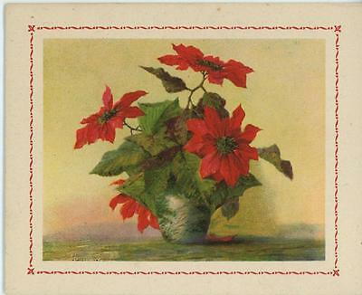 VINTAGE POINSETTIA RED FLOWERS POTTED PLANT OLD PICTURE CARD LITHOGRAPH PRINT