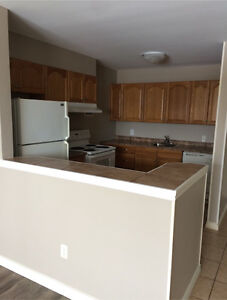 2 Bedroom Apartment off Herring Cove Rd