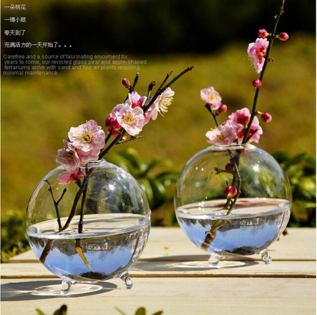 Clear Stand Glass Flower Vase Fish Pot Table Landscape Bottle Round