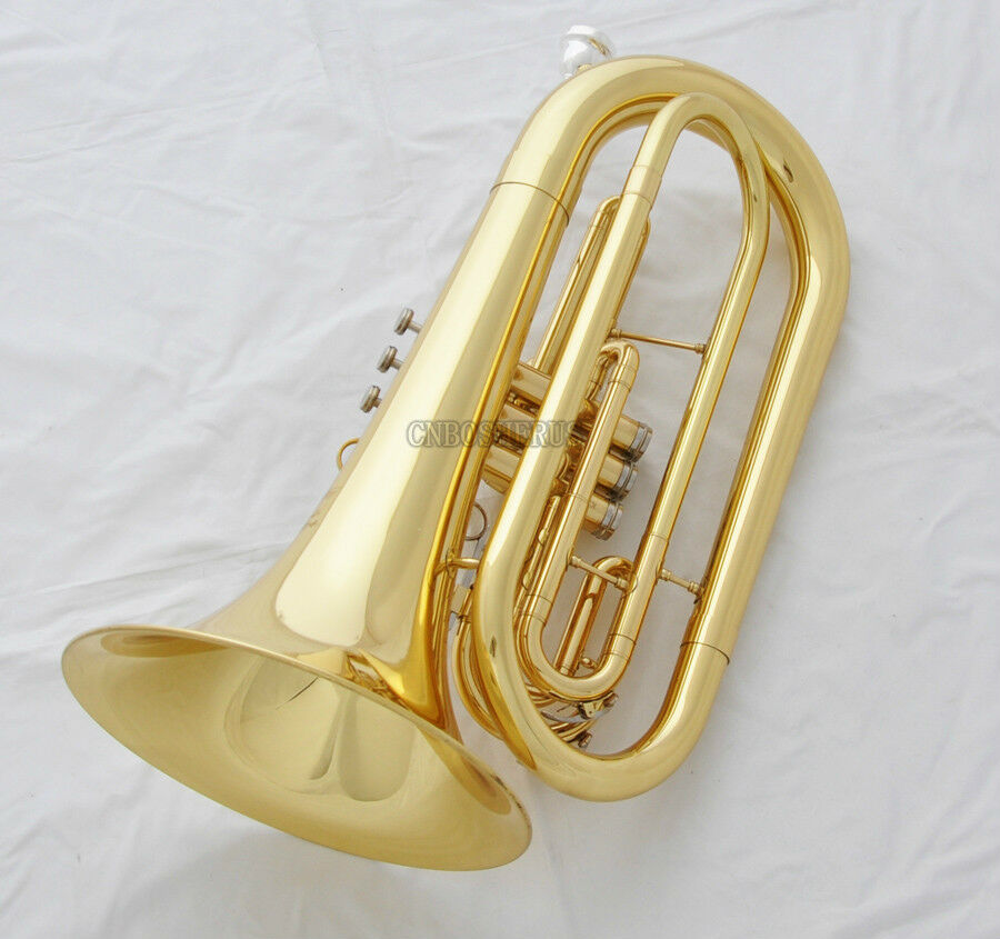 Should I buy this gold marching baritone?