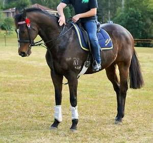Beautiful Boy Just Wasting Jilliby Wyong Area Preview
