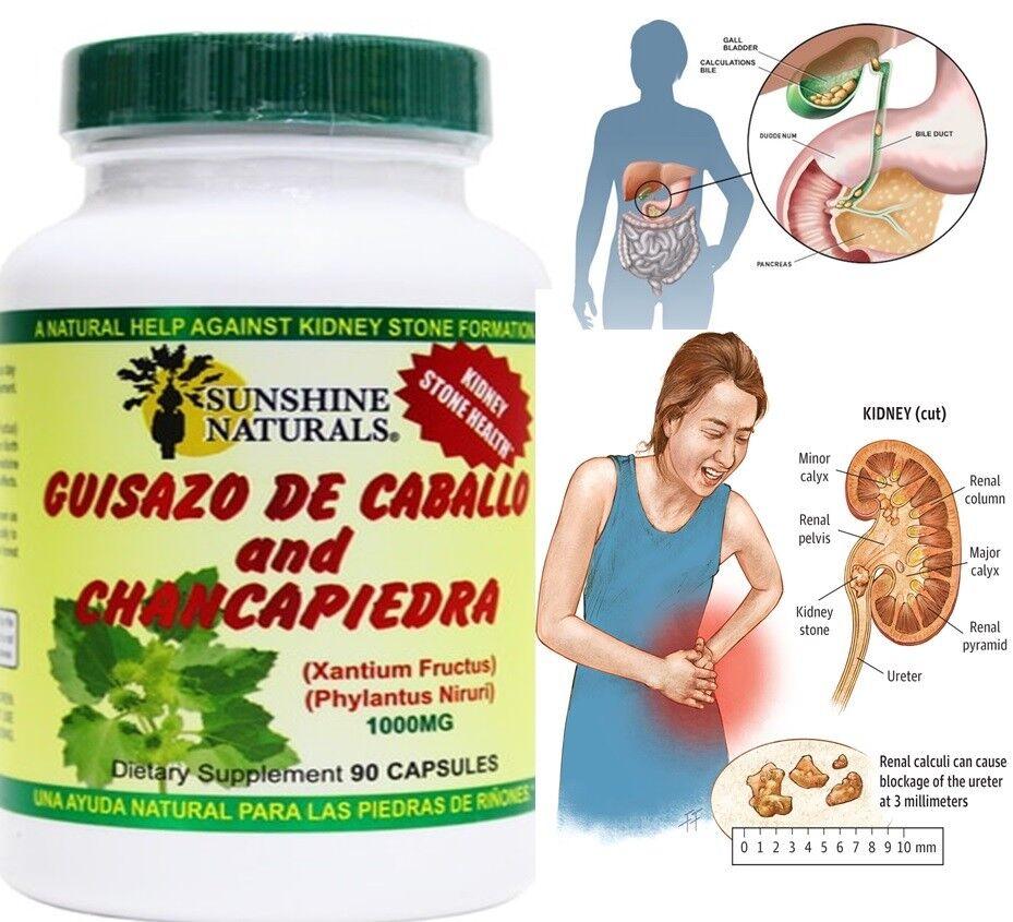 Guisazo de Caballo y Chancapiedra 90 Caps1000 mg Rinones Prostatitis Sunshine 1