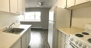 Pet Friendly Building- 2 Bedroom Apartment Available