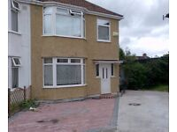 Double rooms in Polish house £420PCM