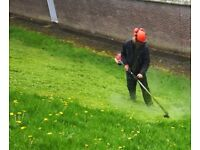 HandyMan, Garden Services & Landscaping - Hedges & Tree Work, Turfing, Gates, Fencing, Repairs