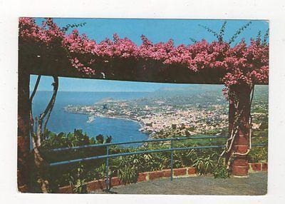Madeira Vista Geral de Funchal Postcard 578a