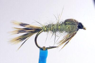 Nr3 SISKIN Tungsten Pheasant Tail Nymphe