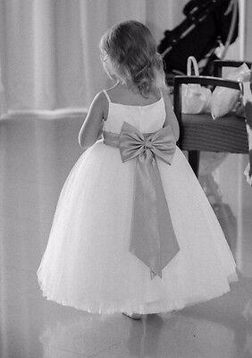 Gorgeous Flower Girl dress Size 3t - Gorgeous Flower Girl Dresses