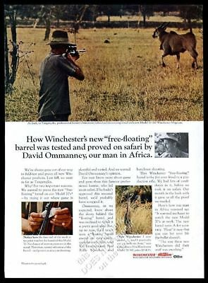 1964 Winchester model 70-300 Magnum rifle David Ommanney hunting photo print ad
