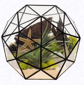 Glass Terrariums For Sale Bulk Stock Wholesale Prices