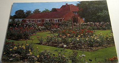 England The Small Rose Garden Royal National Rose Society St Albans Cotman-Color