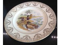 Pair of Decorative Dinner Plates Geese / Ducks