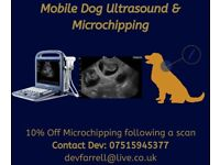 Mobile Dog Microchipping & Ultrasound Scans
