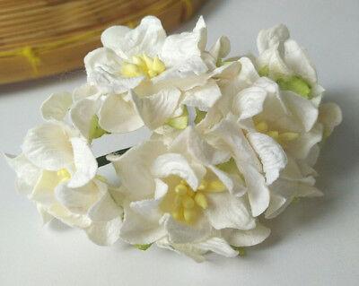 Off White Gardenia Mulberry Paper Flower Scrapbooking Card Crafts Wedding 3.75cm (Paper Flower Crafts)