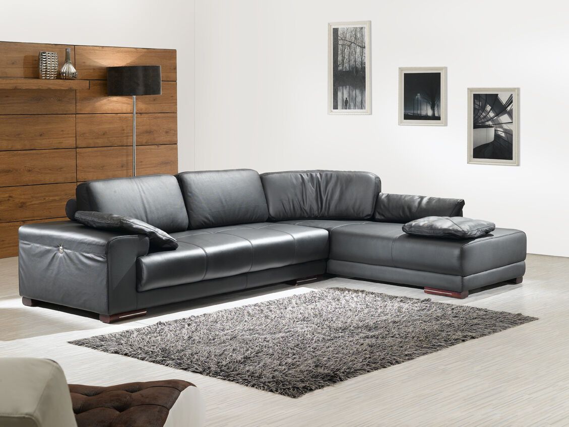 voll leder ecksofa designsofas designgarnitur eckcouch. Black Bedroom Furniture Sets. Home Design Ideas