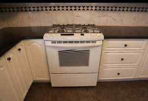 Kitchen Aid Stove and Gas Oven