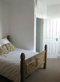 Fantastic double en-suite room to rent in professional house share