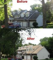 Cedar shake roof renewal and repair painting sealing cleaning