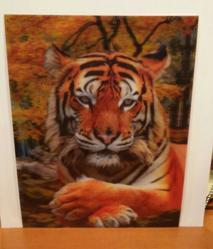 Tiger  lenticular poster print