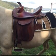 Super stock saddle Tenterfield Tenterfield Area Preview