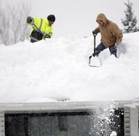Professional snow removal, FREE QUOTE!